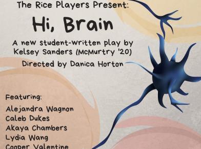 'Hi, Brain' at Hamman Hall